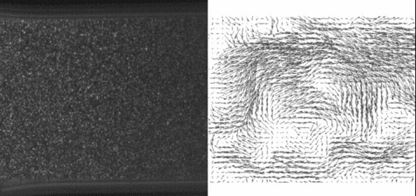 Particle images